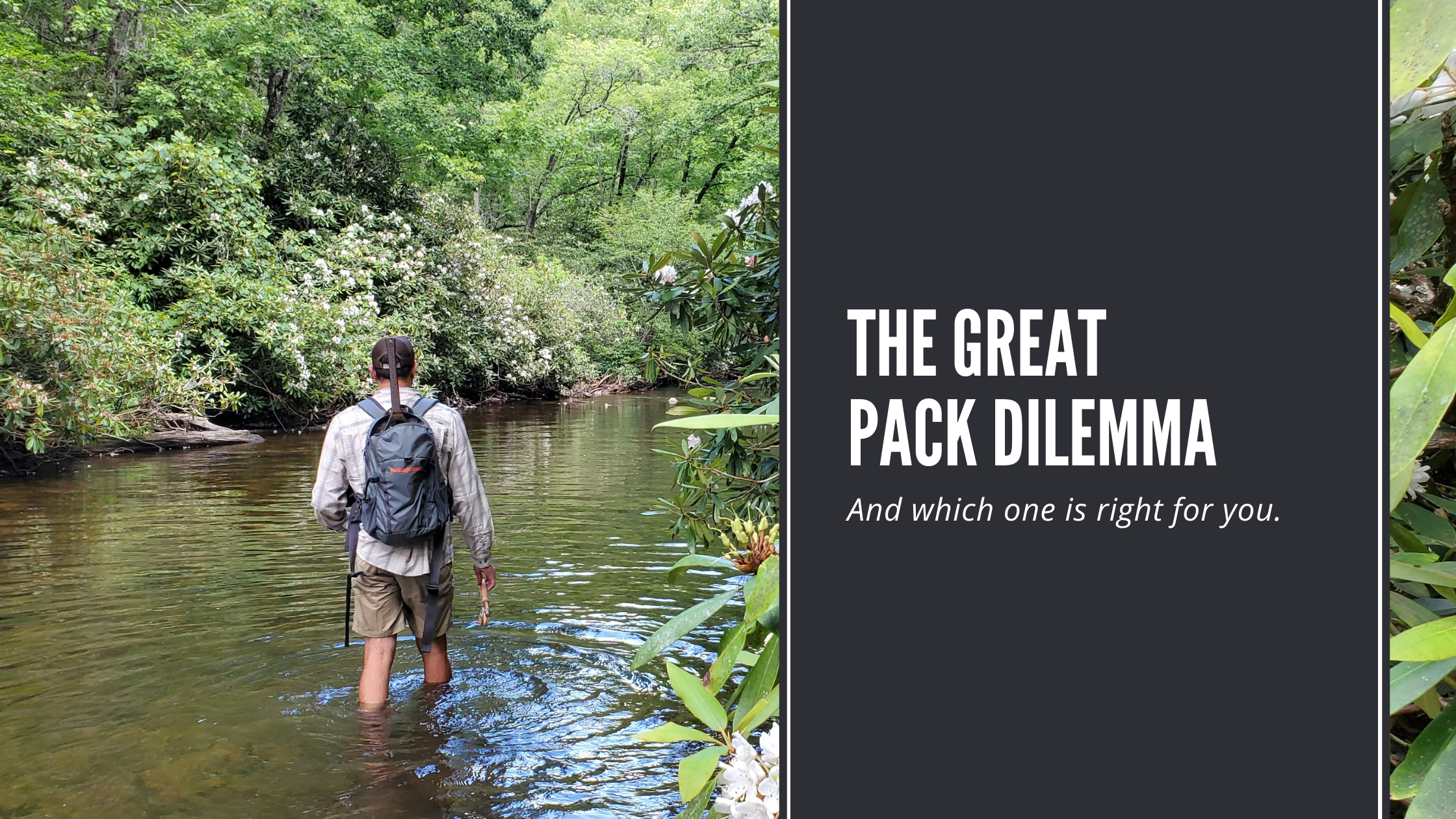 The Great Pack Dilemma: On the Water Storage Solutions Explained.