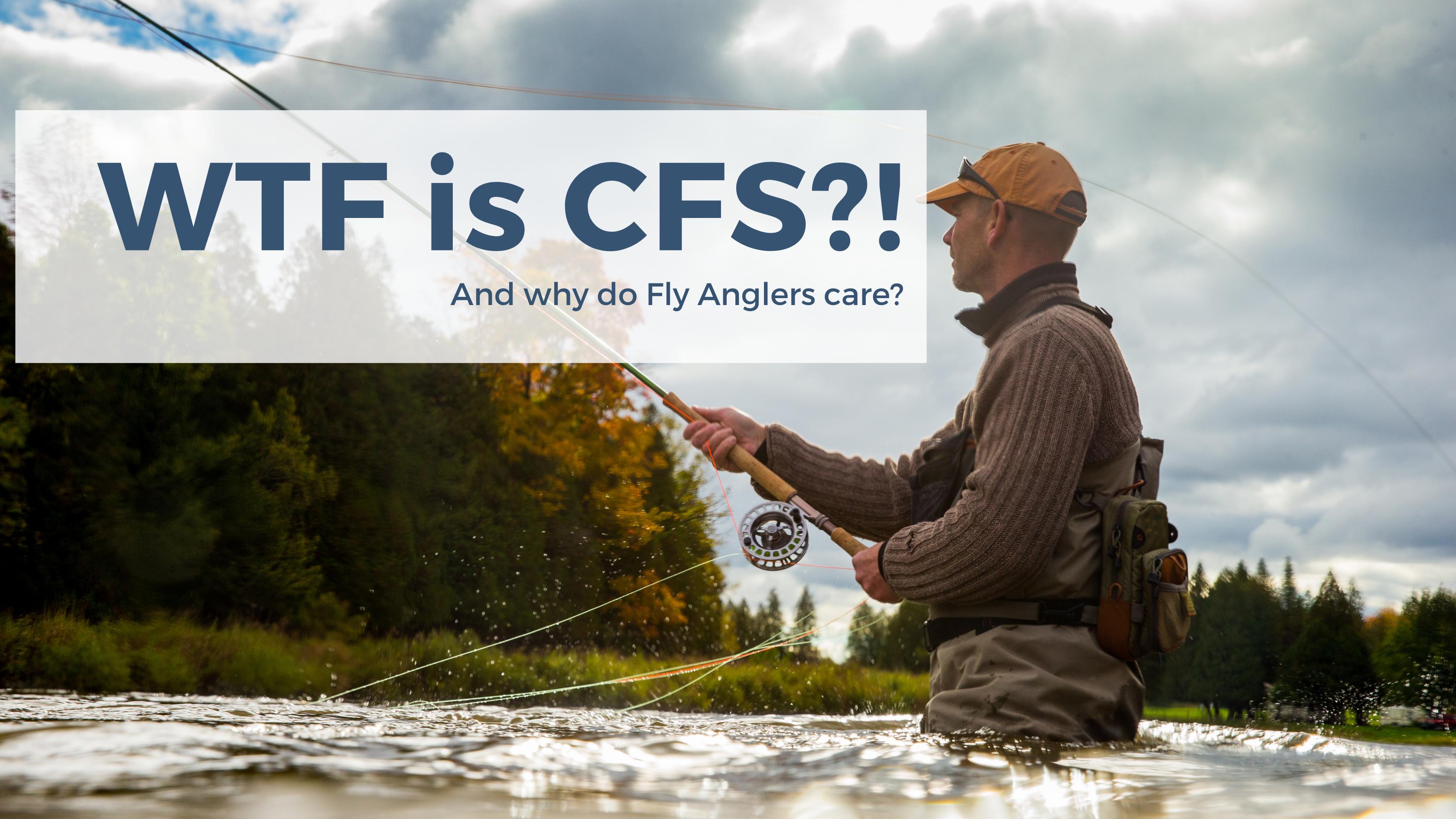 WTF is CFS?!